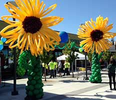 Giant sunflower balloon sculptures are used to attract customers for a sales event at Whole Foods