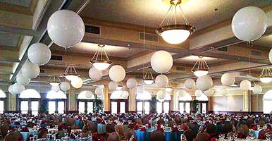 30 inch pearl colored balloons suspended from a venue ceiling