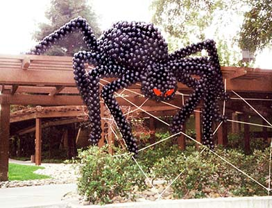 This 20 foot tall long giant balloon sculpture spider spider wraps this Silicon Valley office building in its web.