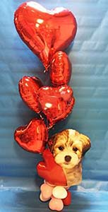 This joyful bouquet consists of a cuddly balloon puppy carrying a bouquet of (6) red mylar hearts.